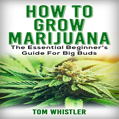 How to Grow Marijuana Titelbild