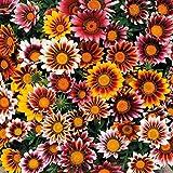 SVI Bouquet, composizioni di fiori e ghirlande