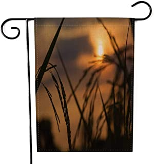 EMMTEEY Holiday Garden Flag Double Sided Burlap Decoration 12.5x18 Inch for Yard Outdoor Decor Garden Flag Silhouette of Spike Sunset at