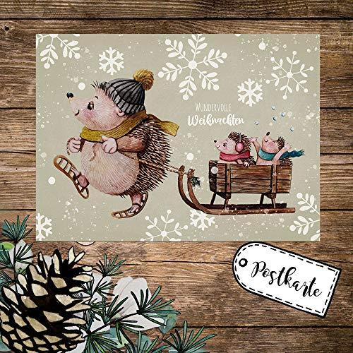ilka parey wandtattoo-welt A6 Weihnachtskarte Weihnachtsgrüße Postkarte Print Igel Igelkinder Schlitten Grußkarte Wundervolle Weihnachten pk260 - ausgewählte Größe: *1 Stück*