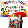 Mexican Fiesta Theme Birthday Photography Backdrop Mexican Theme Party Photo Booth Background Colorful Luau Theme Cinco De Mayo Party Backdrop Banner Fiesta Party Decoration Supplies, 70.9 x 45.3 Inch #4
