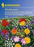 Wildblumen (Kiepenkerl Wildblumen Mischung) 0-0cm / 1 Packung (Blumenzwiebeln, Sommerblüher (Aussaat im Frühjahr))