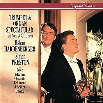 Trumpet & Organ Spectacular at Sorø Church
