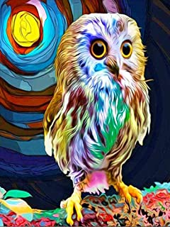 Ecstasy Owl DIY 5D Diamond Painting Kits for Adults Kids Wall Painting Gift Arts and Crafts Painting by Numbers for Adults...