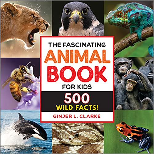 Compare Textbook Prices for The Fascinating Animal Book for Kids: 500 Wild Facts! Fascinating Facts  ISBN 9781646111497 by Clarke, Ginjer