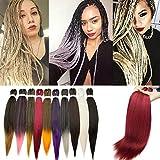 SEGO Meches Pour Tresses Africaine Rajout Extension Cheveux Fibre Synthetique Kanekalon Box Braids Crochet Braids - [ 1 Ton 100g ] 26 Pouces (66cm) Vin Rouge