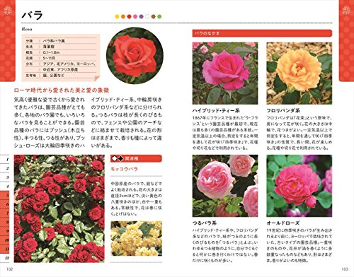 色と形で見わけ散歩を楽しむ花図鑑