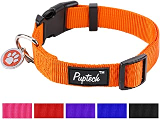 lab puppy collar size