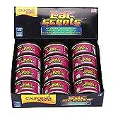 California Car Scents 8000034 Duftdosen Kirsche 12 Dosen inkl. 12Deckel, Violet, Set of 12