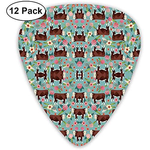 12 Pack Hereford Koe Bloemen Golf Blauw Behang Gitaar Picks Complete Gift Set voor Gitarist