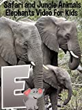 Safari and Jungle Animals - Elephants Video For Kids