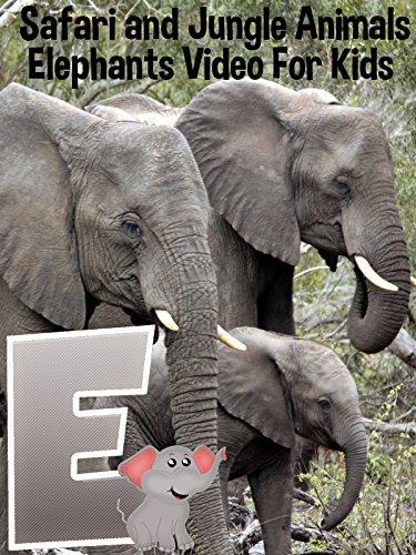 Safari and Jungle Animals - Elephants Video For Kids