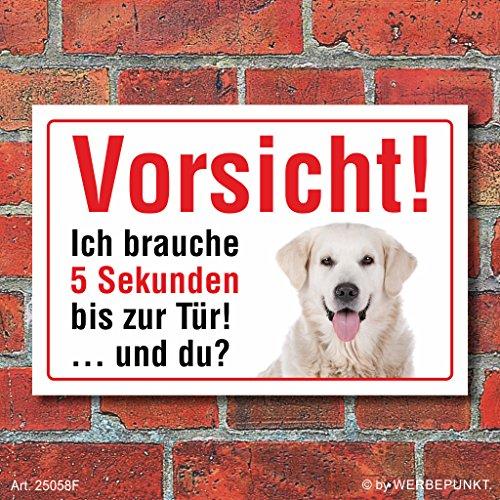 """Vorsicht """"5 Sekunden"""", Golden Retriever, Hund, Schild, Hinweis, 3 mm Alu-Verbund Motiv 1 300 x 200 mm"""