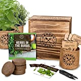 Indoor Herb Garden Starter Kit - Heirloom, Non-GMO Herb Seeds - Basil...
