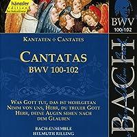 Cantatas Bwv 100-1-2