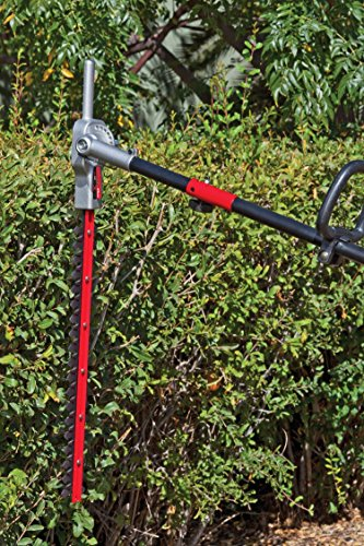 TrimmerPlus AH721 22-Inch Dual Hedger Attachment for Attachment Capable String Trimmers, Polesaws, and Powerheads