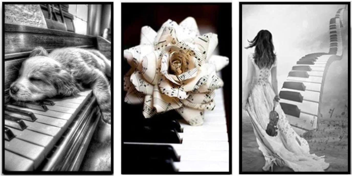 Canvas Painting Wall Art Black And Piano Musi White Max 82% In a popularity OFF Flowers With
