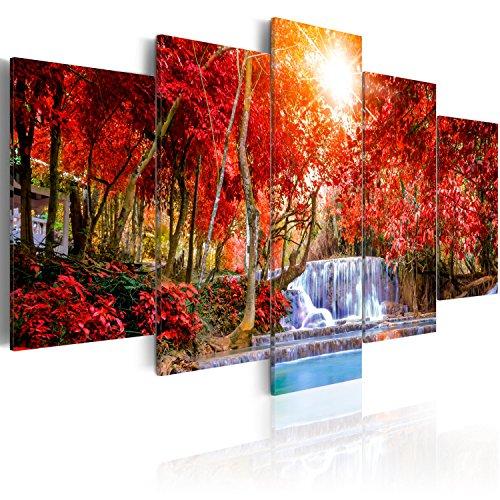 murando - Cuadro en Lienzo 225x112 cm Impresión de 5 Piezas Material Tejido no Tejido Impresión Artística Imagen Gráfica Decoracion de Pared Cascada Naturaleza Paisaje c-B-0120-b-m