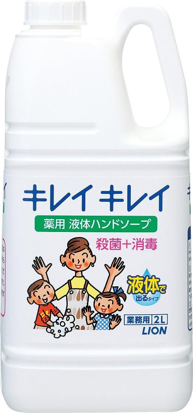 環境メアリアンジョーンズデザイナー【業務用 大容量】キレイキレイ 薬用 ハンドソープ 2L(医薬部外品)