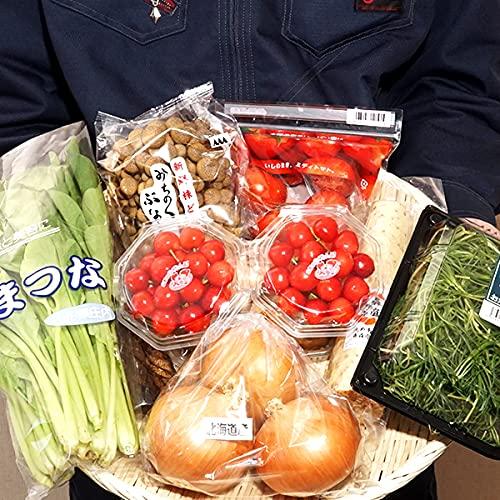 国産 おまかせ 野菜&果物セット F 旬野菜 季節野菜 人気 野菜セット 母の日 お取り寄せ