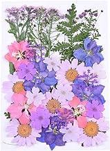 Milisten 30pcs Real Dried Pressed Flowers,Pink Purple Larkspur Natural Pressed Flowers for Scrapbooking DIY Candle Resin J...