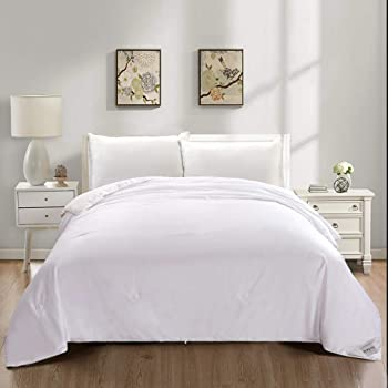 Silk Comforter Duvet, 100% Mulberry Silk Filled Quilt with Cotton Shell, Queen 90x86 Inches