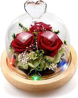 StillCool Naturelle éTernelle Rose Rose Rouge Magique, Roses jamais fanées, Fleurs Immortelles Haut de Gamme, Fleurs de la...