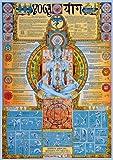 Educational - Bildung Yoga Bildungsposter Plakat Druck -
