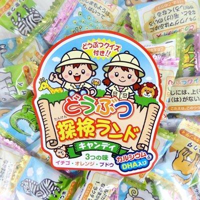マルエ製菓 どうぶつ探検ランドキャンディ 1キロ×10袋