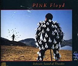 pink floyd delicate sound of thunder live