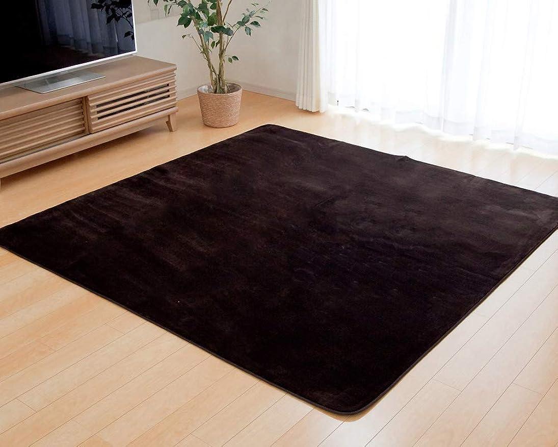 偏心何よりも家具ラグマット カーペット『 フラン 』【IT-tm】 約130×185cm ブラウン(#9810212)