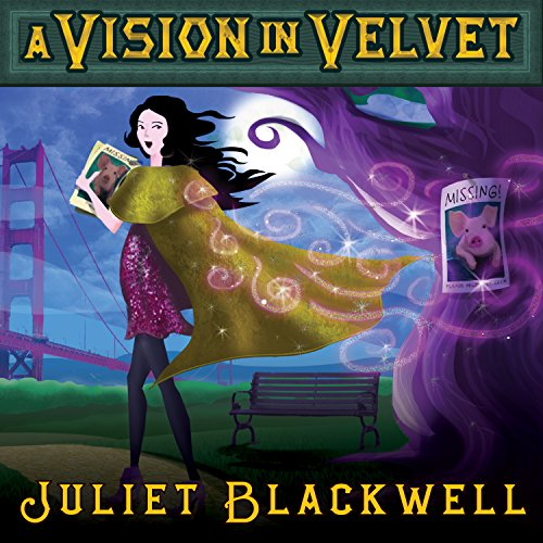 A Vision in Velvet audiobook cover art