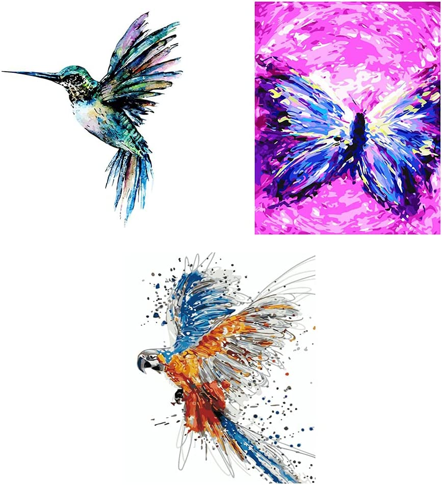 Colorful HummingbirdParotButterfly DIY Acrylic by Cheap Limited time sale mail order sales Nu Paint Oil