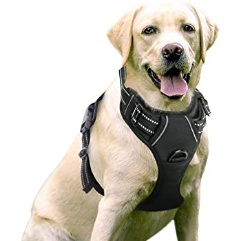 rabbitgoo Dog Harness, No-Pull Pet Harness with 2 Leash Clips, Adjustable Soft Padded Dog Vest, Reflective No-Choke Pet Oxford Vest with Easy Control Handle for Large Dogs, Black, L, Chest 20.5-36""