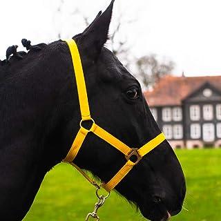 Halster voor paard, warmbloed, volbloed, koudbloed – stalhouder, weidehouder, 2-voudig verstelbaar aan kinriem en nekstuk,...