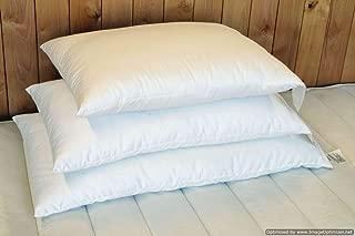 Holy Lamb Organics Wool Bed Pillow - King - Medium Fill