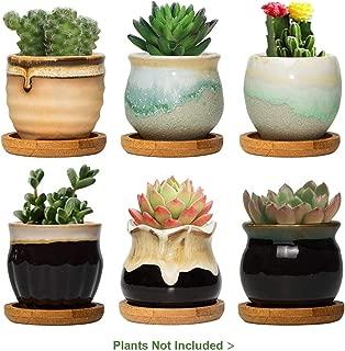 Best ceramic planters for sale Reviews