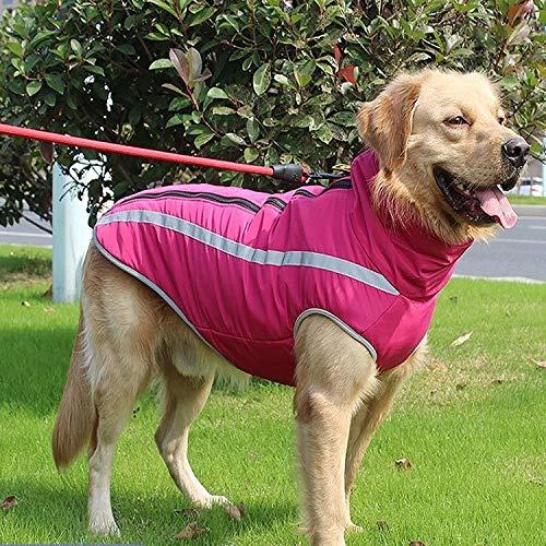 Haustier Hundejacke mit Gurt, Wind- Hundeweste mit reflektierenden Streifen, geeignet for mittelgroße große Hunde, warme und Bequeme Hundesportweste, Wintermäntel for Hunde, warmen Hals Hund Kleidung