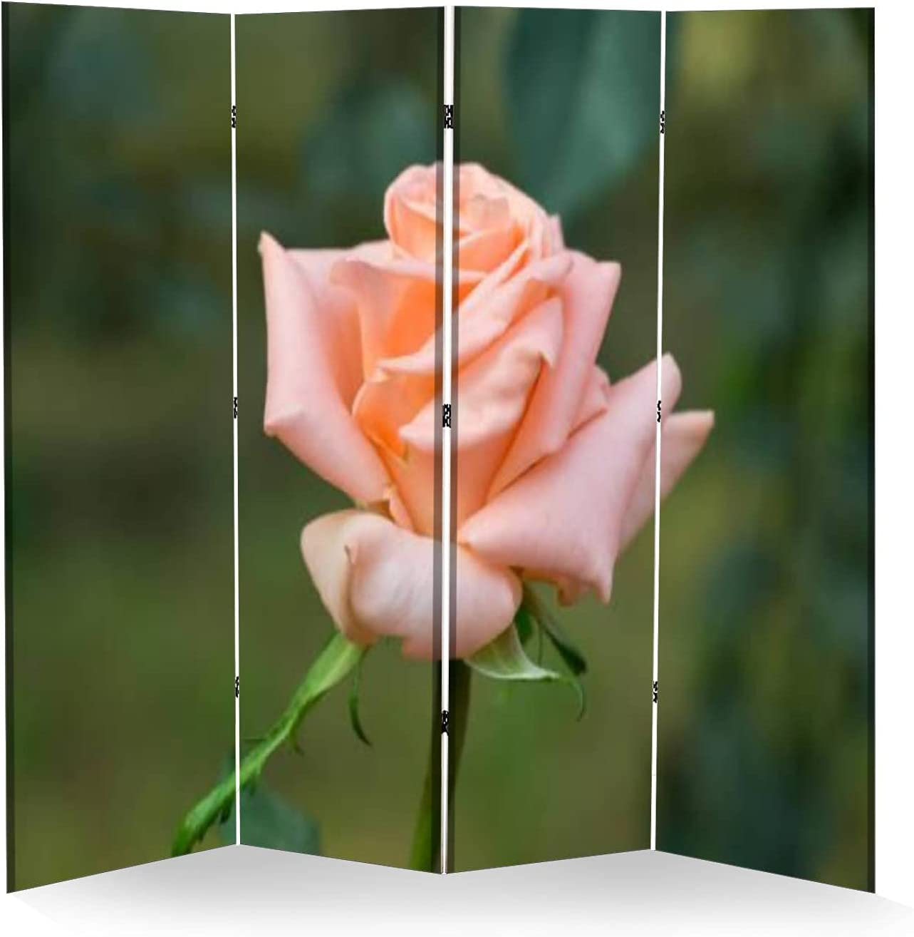4 Panel sold out Wall Divider Early Flower Beautiful Elegant Garden Rose Morning