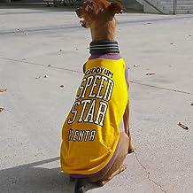 名入れ SPEED STAR タンクトップ イタリアングレーハウンド服 イタグレ服 犬服 (タイプG(ブルー×オレンジ), L)