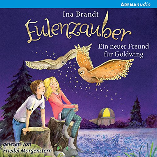 Ein Freund für Goldwing audiobook cover art