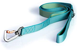 Sleepypod Power Leash (Large, Blue Lagoon)
