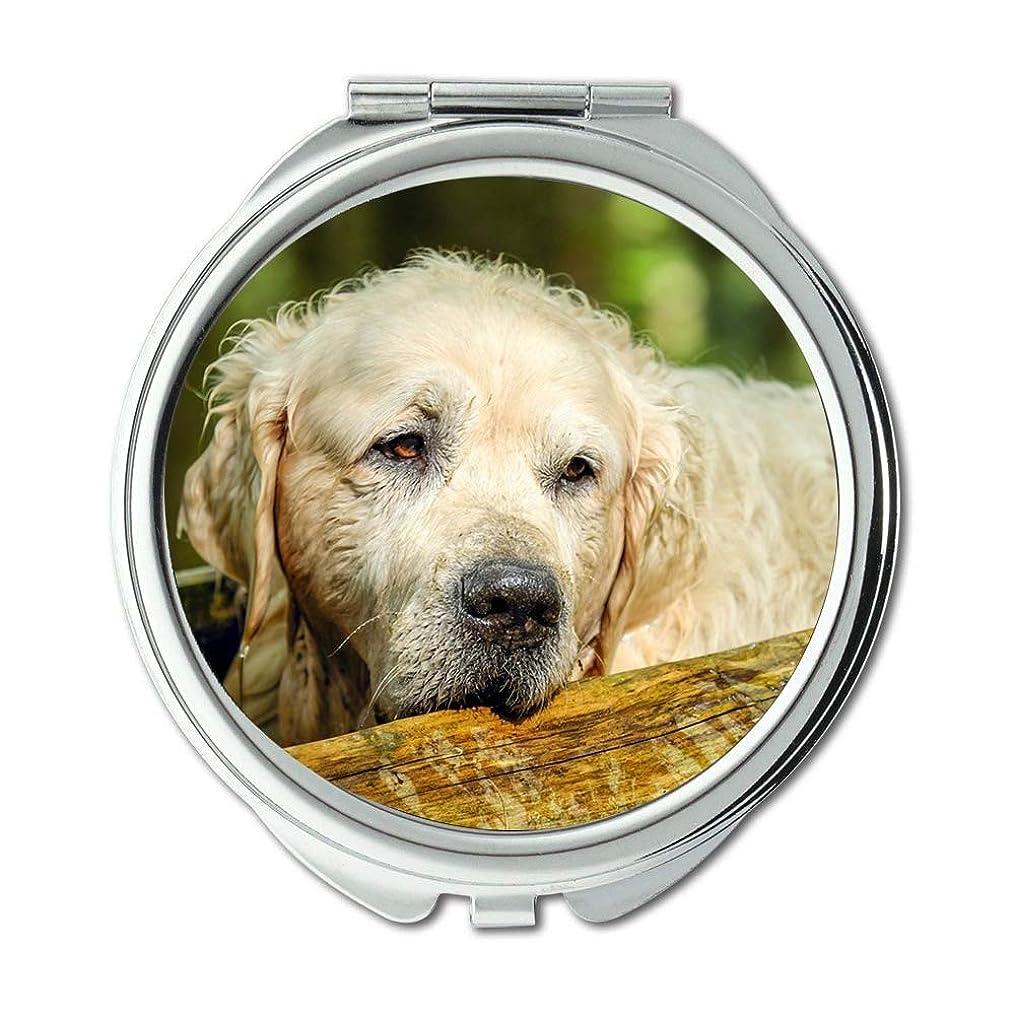 判定に頼る印象的ミラー、トラベルミラー、ゴールデンレトリーバー犬レトリーバー男性オールド、ポケットミラー、ポータブルミラー