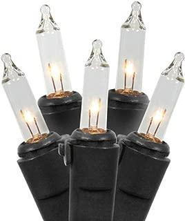 Vickerman Set of 100 Clear Mini Christmas Lights - Black Wire