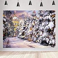 写真撮影のためのHD冬杉風景の背景ロシア風ドーム城の建物の背景パーティーの装飾バナー7x5ftLSMT1214