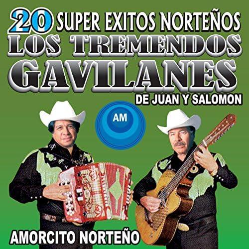 Los Tremendos Gavilanes: Juan Y Salomón