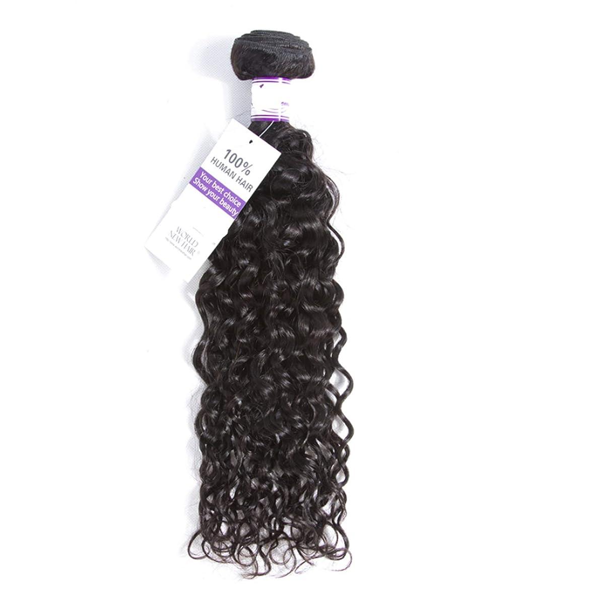 悲鳴永遠の成熟したマレーシア水波ヘアバンドル8-28インチ100%alidoremi人間の髪織りレミー髪ナチュラルカラー1ピース髪織り かつら (Stretched Length : 14inches)