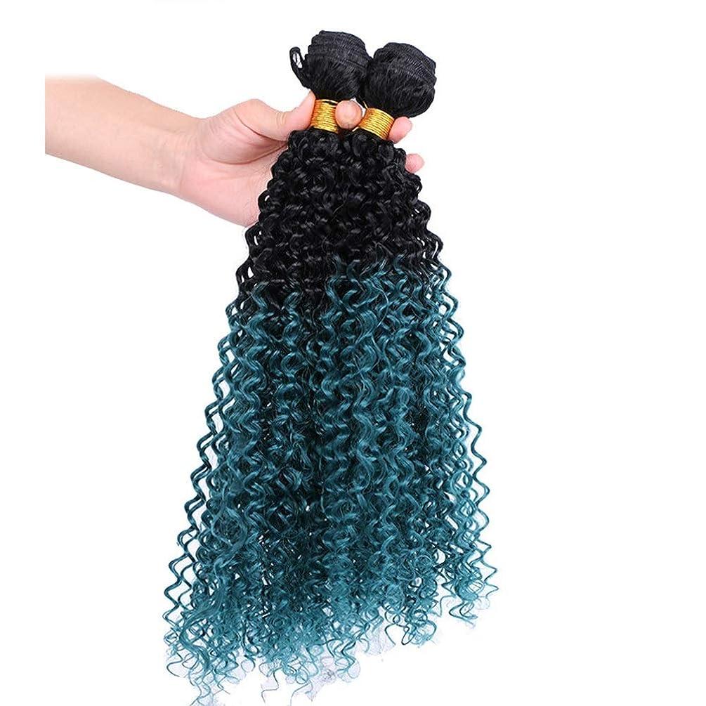 病な統合一月YAHONGOE 3バンドルブルーカーリー総合ヘアエクステンション女性のコスプレパーティードレス合成髪レースかつらロールプレイングかつらロングとショート女性自然 (色 : 青, サイズ : 22inch)