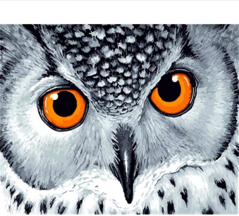 Waofe Gerahmte Bilder Malen Nach Zahlen Tierhandarbeit Leinwand Ölgemälde Wohnkultur Für Wohnzimmer B07Q6BHBS2 | Hohe Qualität und Wirtschaftlichkeit