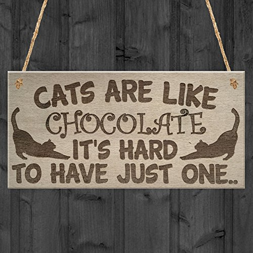 RED OCEAN Cats Are Like Chocolate Funny Pet Diet Gift Wood Hanging Plaque Friendship Sign Cat Lovers